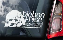 Bichon Frise V01