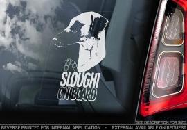 Sloughi V02
