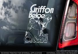 Griffon Belge V02