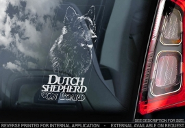 Hollandse Herder - Dutch Shepherd - V02