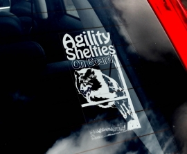 Agility Shelties V01