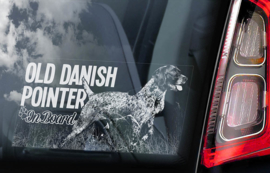 Old Danish Pointer V01