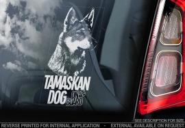 Tamaskan Dog - V02