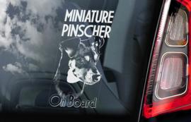 Dwerg Pinscher - Miniature Pinscher V01