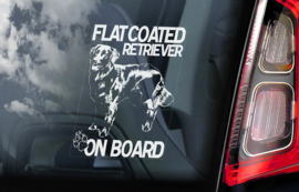 Flatcoated Retriever V01