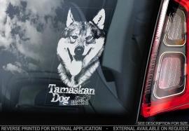 Tamaskan Dog - V03