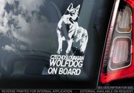 Tsjechoslowaakse Wolfhond -  Czechoslovakian Wolfdog V01