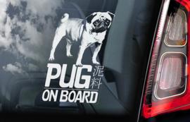 Mopshond - Pug Dog V01