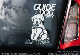 Geleide hond, Pup - Guide Dog - Puppy V01