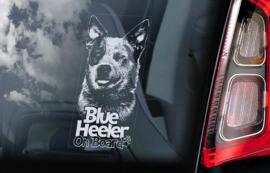 Australian Cattle Dog - Blue Heeler V01