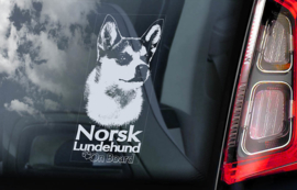 Norsk Lundehund V02