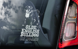 Olde English Bulldog V02