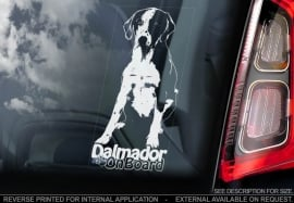 Dalmador V01