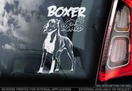 Boxer V02