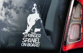 Springer Spaniel V01