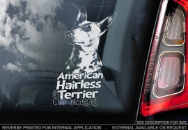 Amerikaanse Naakthond - American Hairless Terrier V01