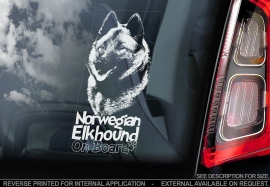Noorse Elandhond - Norwegian Elkhound V2