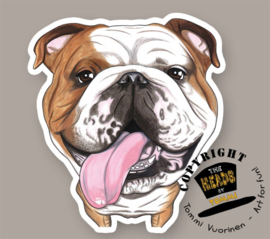 HEADS MAGNEET BULLDOG