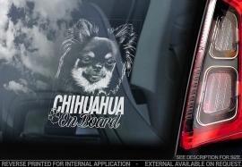 Chihuahua langhaar V06