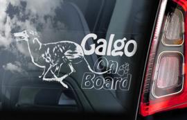 Galgo V04