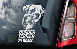 Border Terrier V01
