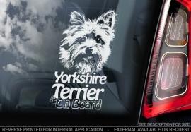 Yorkshire Terrier V03
