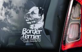 Border Terrier V03