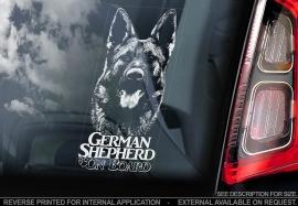 Duitse Herderhond - Deutscher Schäferhund - German Shepherd  V07