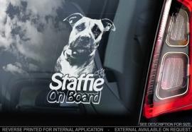 Staffordshire Bull Terrier V9