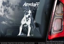 American Stafforshire Terrier  V5