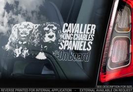 Cavelier King Charles Spaniel V05
