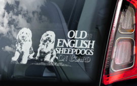 Old English Sheepdog -  Bobtail V02