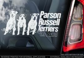 Parson Russel Terrier V02