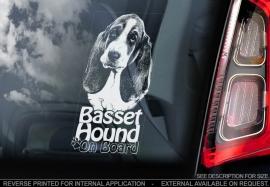 Basset Hound V02