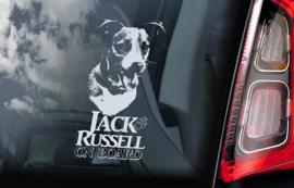 Jack Russel Terrier V07