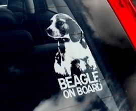 Beagle V01