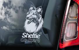 Shetland Sheepdog V01 - Sheltie V03