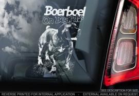 Boerboel V08