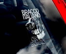 Bracco Italiano - Italiaanse Brak V01