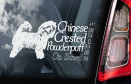 Chinese gekuifde naakthond powder puff - Chinese Crested Powderpuff V01