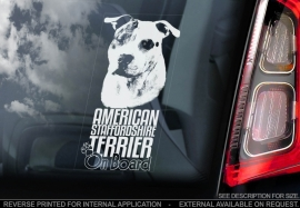 American Stafforshire Terrier  V4