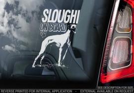 Sloughi  V01