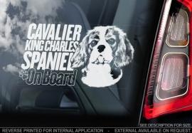 Cavelier King Charles Spaniel V02