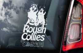 Schotse Herdershond (Collie) - Rough Collie   V02