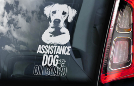 Geleide hond - assistance dog - Guide Dog V01