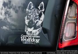 Tsjechoslowaakse Wolfhond - Czechoslovakian Wolfdog V08
