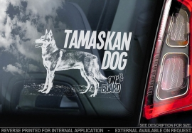 Tamaskan Dog - V04