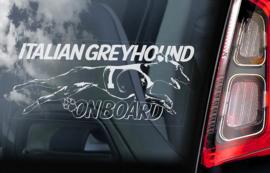 Italiaans Windhondje - Italian Greyhound V04