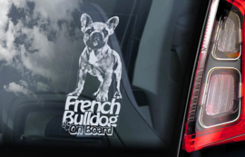 Franse Bulldog - French Bulldog - V03