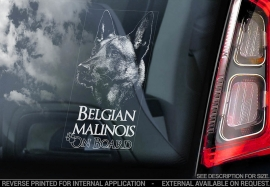 Belgische Herder: Mechelse V18